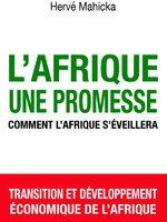 Livre à paraître :  L'Afrique , une promesse Comment l'Afrique s'éveillera