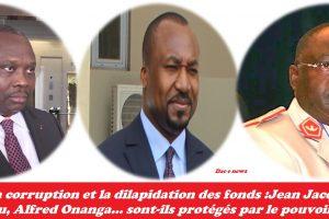 Pourquoi les pilleurs:  Jean Jacques Bouya, Christel Sassou, Alfred Onanga...sont-ils protégés par le pouvoir?