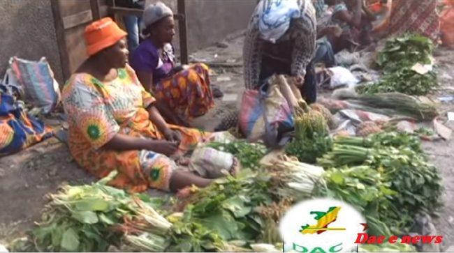 Congo-Brazzaville : Environnement, à quand la prise de conscience ?