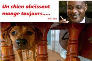 Élection Maire de Brazzaville: Une affaire de chien