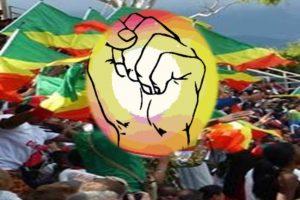29 après la CNS, que reste-t-il du syndicalisme au Congo ?