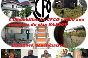 Congo-Brazzaville : des ventes toxiques des biens du CFCO