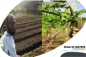 Congo Brazzaville: Visitez ses plantations, Mr le Premier Ministre, Chef de Gouvernement Anatole Collinet Makosso.